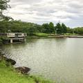 大雨の影響で水かさが増えていた落合公園の落合池 - 16
