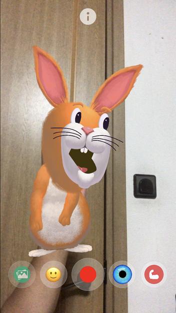 ARでパペット人形が楽しめる「YoPuppet」- 17:ウサギ