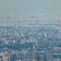 Photos: 弥勒山山頂から見た景色 - 11:名港中央大橋と新名古屋火力発電所