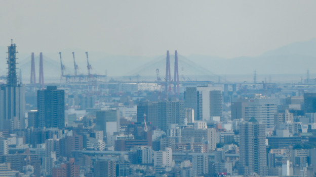 雨続きが開けて遠くまで見通せた尾張白山社からの景色 - 4:名港西大橋と名古屋港の巨大クレーン