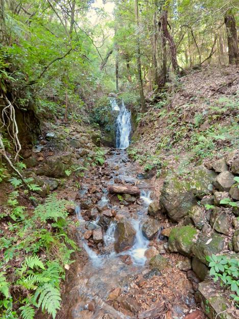 道樹山:縁者不動の滝 - 2
