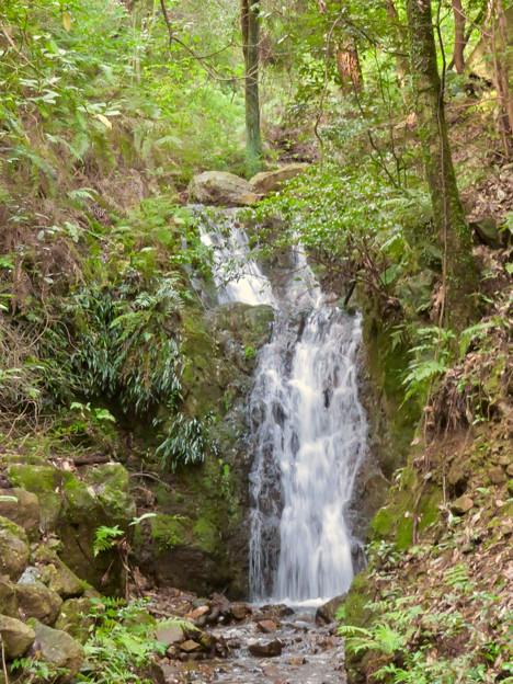 道樹山:縁者不動の滝 - 3