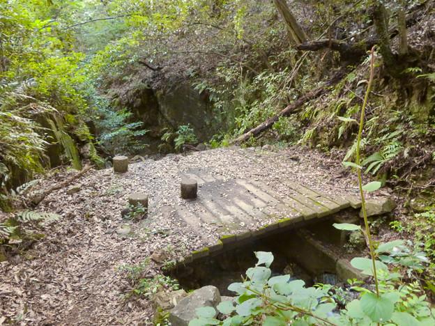 道樹山:縁者不動の滝 - 8(滝が見られる橋)
