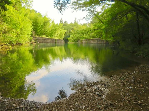 道樹山:麓にある柿ノ木川をせき止めて作られた池 - 2