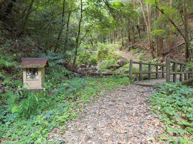 道樹山:柿ノ木川沿いの登山道 - 6(祠と橋)
