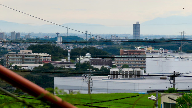 高森台から見た桃花台ニュータウン - 1