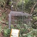Photos: 東谷山に設置されてたイノシシ用?の檻 - 1
