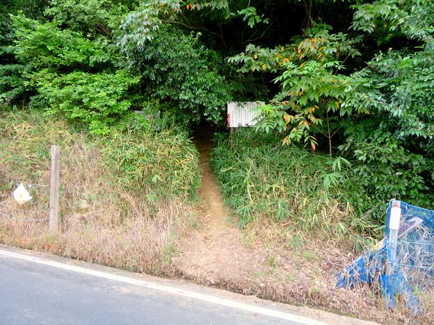 東谷山の登山道入り口(フルーツパーク側) - 1