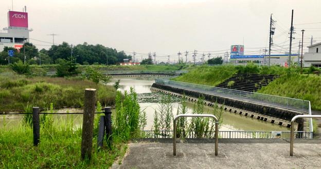 平池緑地 - 15:池沿いの道に降りる口に設けられてる柵