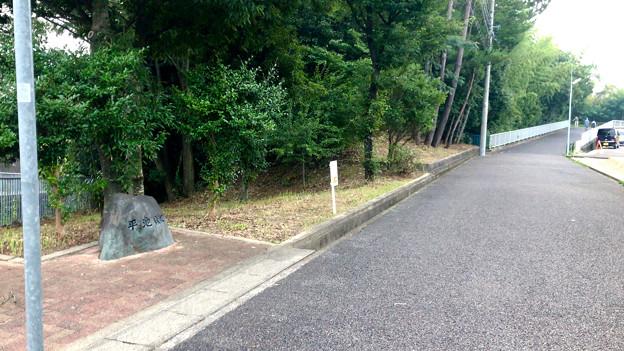平池緑地 - 19:平池緑地の石碑