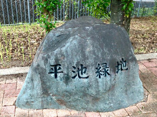 平池緑地 - 20:平池緑地の石碑