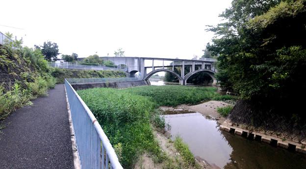 平池緑地 - 24:池沿いの道と特徴的な歩道橋