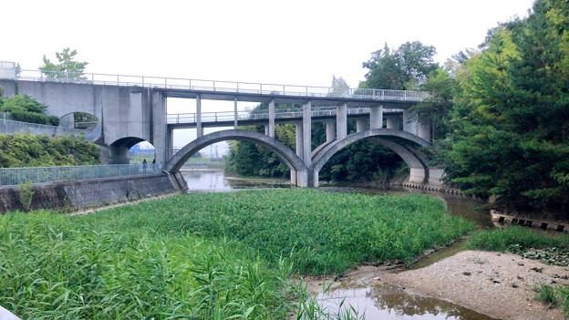 平池緑地 - 25:特徴的な歩道橋