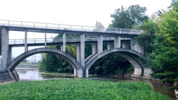 平池緑地 - 26:特徴的な歩道橋