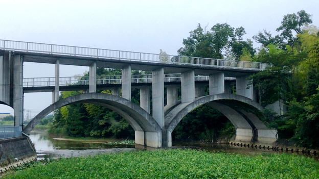 平池緑地 - 27:特徴的な歩道橋