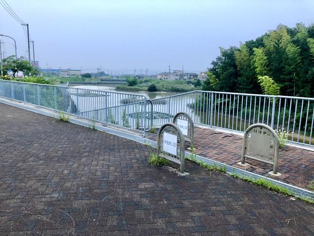 平池緑地 - 28:平池南公園(池沿いに降りる入り口)