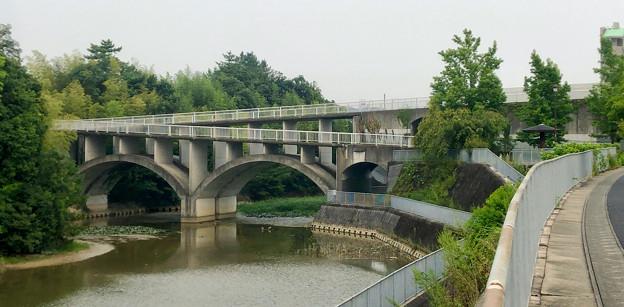 平池緑地 - 2:池に架かる特徴的な歩道橋