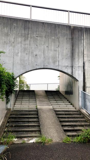 平池緑地 - 10:池沿いの道から上る階段