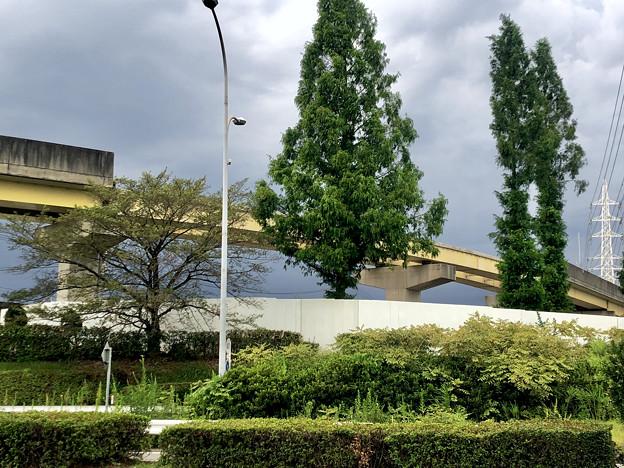桃花台線の国道155号立体交差手前の高架撤去工事(2020年8月22日)- 4