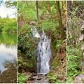 Photos: 道樹山:柿の木池、二宮金次郎像、縁者不動の滝 - 2