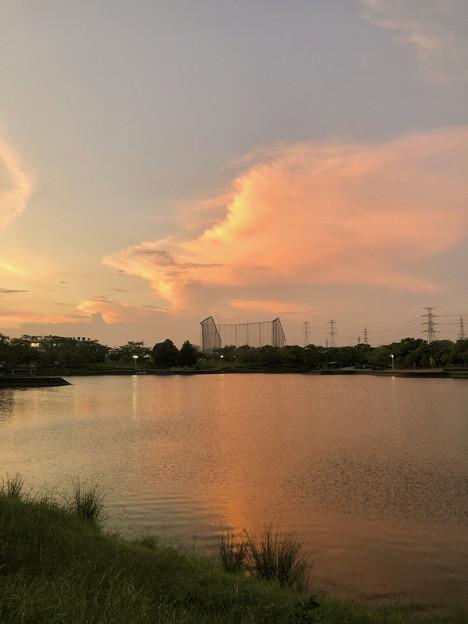 落合公園:夕暮れ時に棚引く雲 - 1