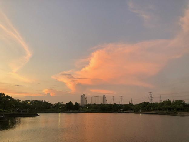 落合公園:夕暮れ時に棚引く雲 - 2