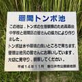 Photos: 岩船神社前にはる廻間トンボ池 - 2