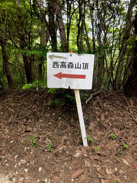 西高森山の登山道 - 12:山頂への矢印案内板