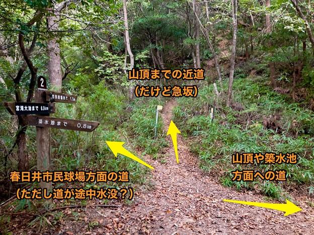 西高森山の登山道 - 16:「2」番の分かれ道(説明)