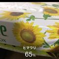 Photos: iOSの花判別アプリ「ハナノナ」 - 17:カメラモード