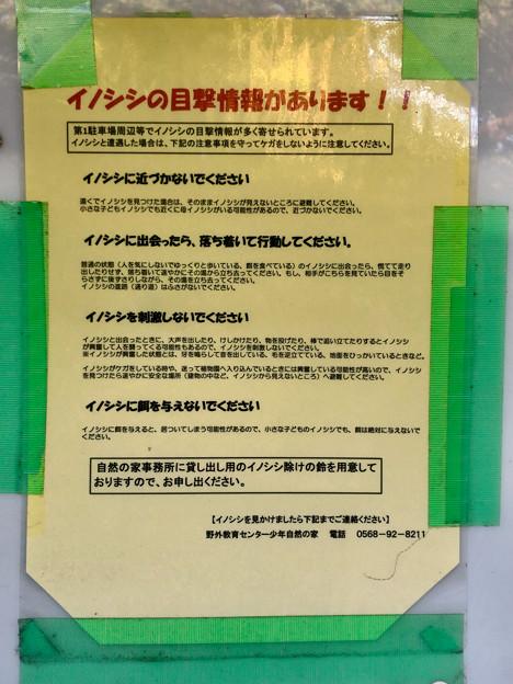 春日井市少年自然の家「野外教育センター」 - 15:イノシシの注意書き