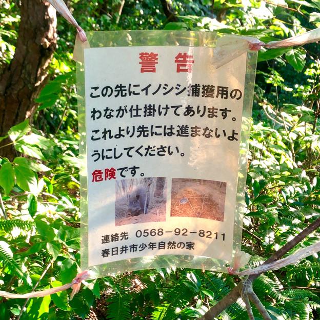 春日井市少年自然の家「野外教育センター」 - 20:イノシシ捕獲用ワナの注意書き