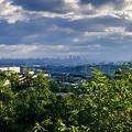 春日井市少年自然の家「野外教育センター」 - 34:展望台から見た名駅ビル群