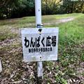 Photos: 春日井市少年自然の家「野外教育センター」 - 43:わんぱく広場