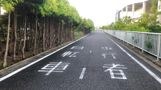 イオン守山店周辺の桃花台と違って仕切りも障害物もない歩道と自転車道
