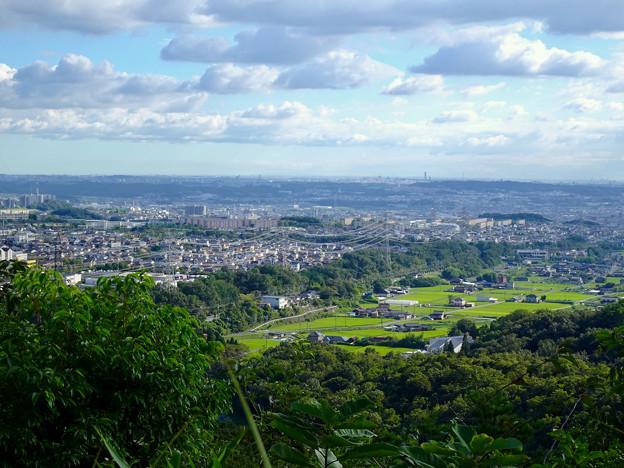 西高森山山頂から見た景色 - 1:廻間町の田園地帯と高蔵寺ニュータウン