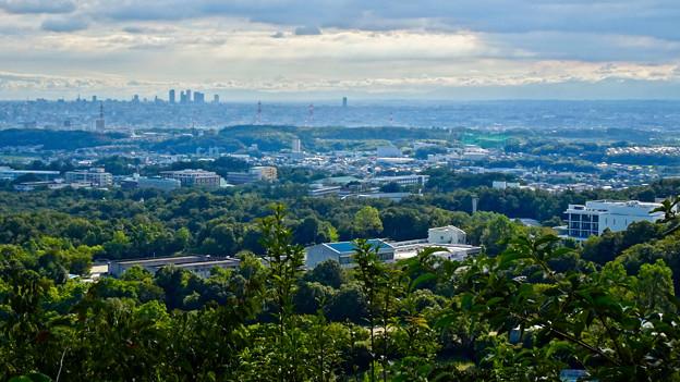 西高森山山頂から見た景色 - 2:名駅ビル群と愛知県医療療育総合センター