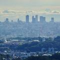 Photos: 西高森山山頂から見た景色 - 3:名駅ビル群