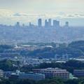 西高森山山頂から見た景色 - 4:名駅ビル群
