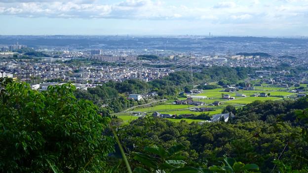 西高森山山頂から見た景色 - 11:廻間町の田園地帯と高蔵寺ニュータウン