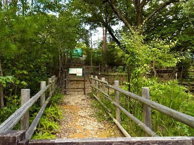 春日井市少年自然の家「野外教育センター」 - 101:キャンプサイト