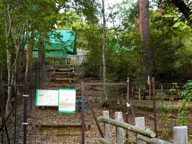春日井市少年自然の家「野外教育センター」 - 102:キャンプサイト