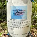 Photos: 春日井市少年自然の家「野外教育センター」 - 97:カエンタケに注意!