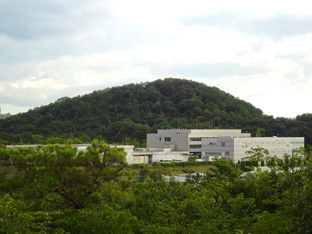 春日井市少年自然の家「野外教育センター」展望台から見た景色 - 13:高森山