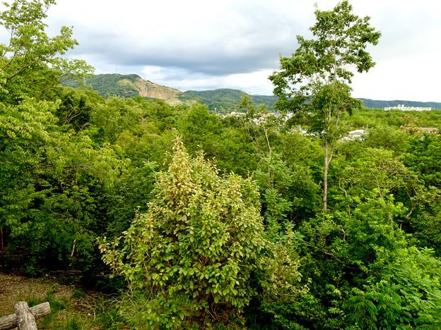春日井市少年自然の家「野外教育センター」展望台から見た景色 - 20