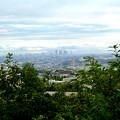 Photos: 春日井市少年自然の家「野外教育センター」展望台から見た景色 - 9:名駅ビル群