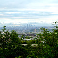 春日井市少年自然の家「野外教育センター」展望台から見た景色 - 9:名駅ビル群