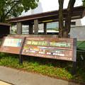 Photos: リニューアルした久屋大通公園「ヒサヤオオドオリパーク」 - 3:公園内と周辺案内図
