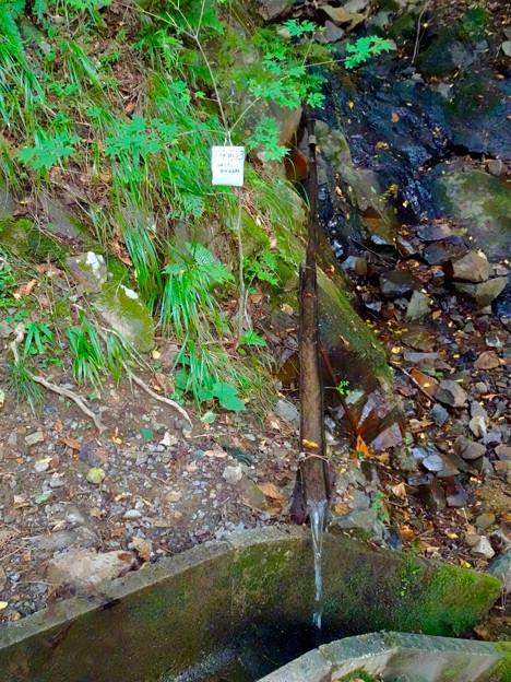 弥勒山山頂へと通じる「23」の分岐点にある水場に「この水飲むな」の注意書き - 1