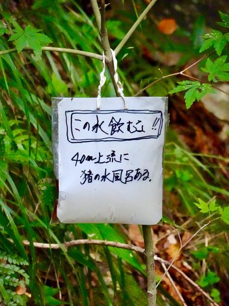 弥勒山山頂へと通じる「23」の分岐点にある水場に「この水飲むな」の注意書き - 2